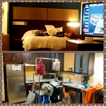Residence Inn Des Moines Downtown: Studio Suite