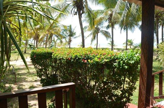 Hotel Awalé Plage : jardin