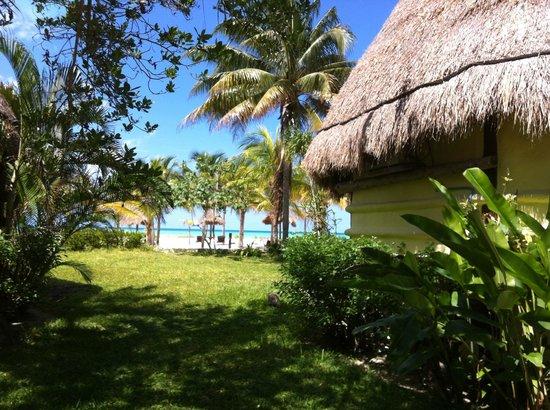 Hotel Villas Delfines: la area alrededor