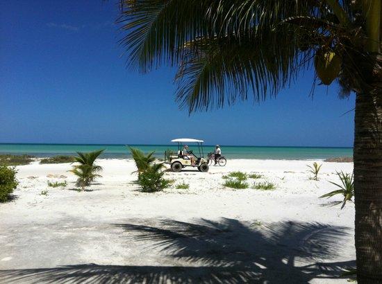 Hotel Villas Delfines : la vista al mar