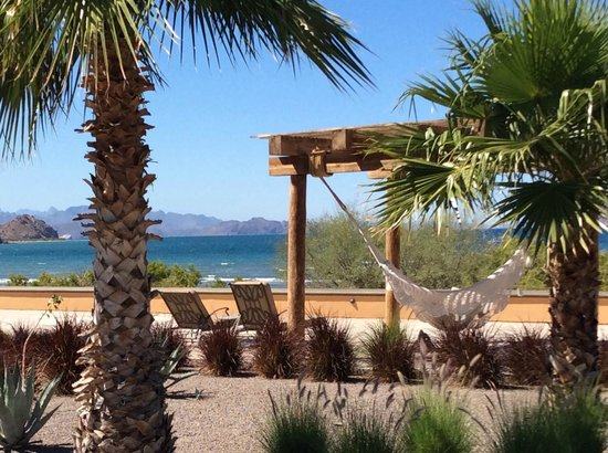 Villa del Palmar Beach Resort & Spa at The Islands of Loreto: Relaxing in a Hammock by the Beach