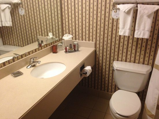 DFW Airport Marriott South : Bathroom