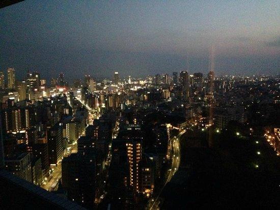 ANA Crowne Plaza Kobe : 夜景