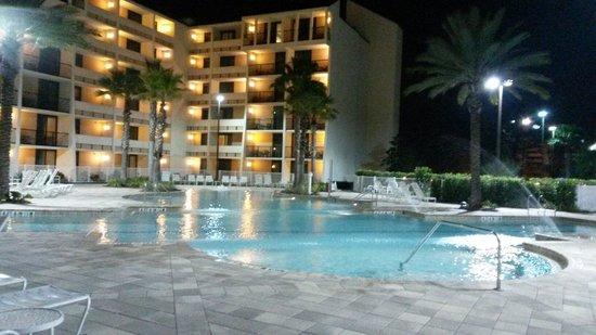 Holiday Inn Orlando – Disney Springs Area: Vista de la pileta