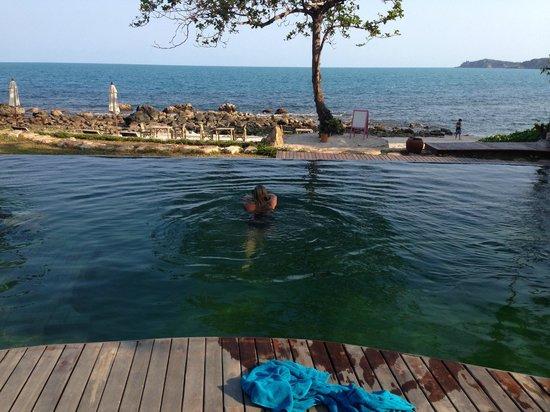 Sea Dance Resort : The pool