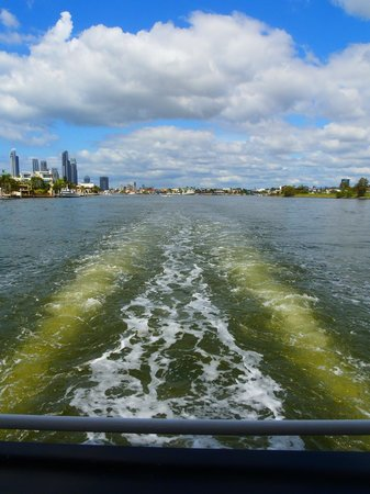 Surfers Paradise River Cruises: Some of the view.