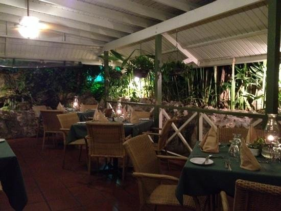 Brown Sugar Restaurant: Welcome to the jungle ;)