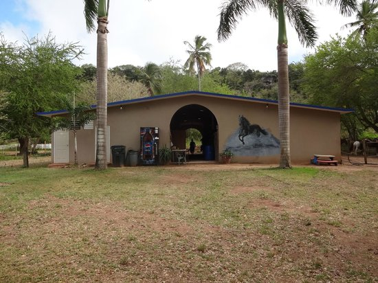 Tropical Trail Rides - Isabela: the barn