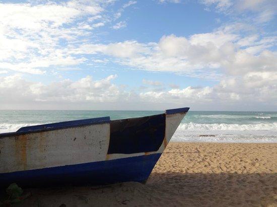 Tropical Trail Rides - Isabela: beach