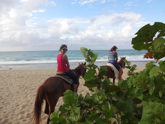 Tropical Trail Rides - Isabela: beach ride
