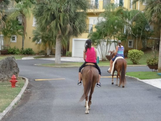 Tropical Trail Rides - Isabela: neighborhood