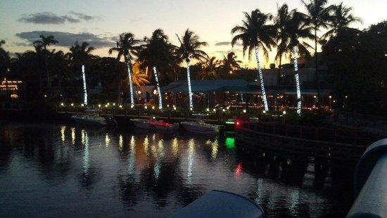 Deck 84 : Beautiful night lights