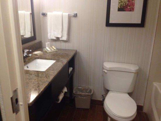Hilton Garden Inn - Orlando North/Lake Mary: Bathroom