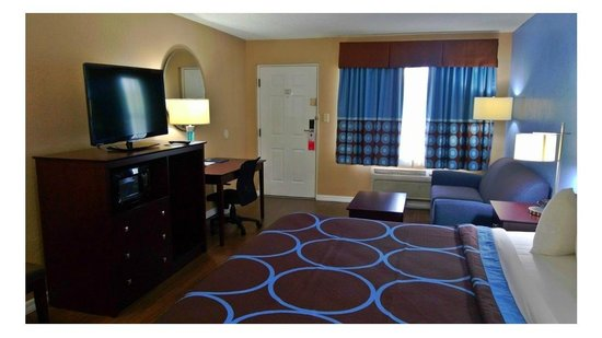 Super 8 Ellenton Bradenton Area : King Room