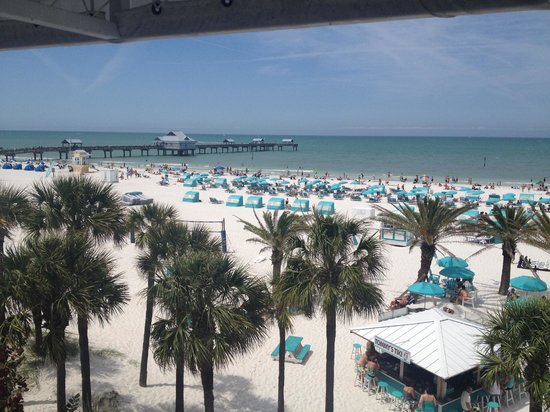 Hilton Clearwater Beach: Hilton resort area