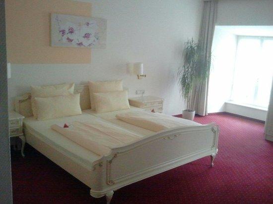 Hotel Bischofschloss: Комната 105