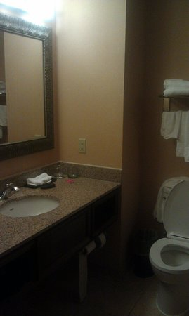 Embassy Suites Huntsville by Hilton Hotel & Spa: Bathroom