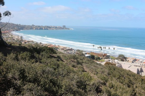 Birch Aquarium at Scripps: La Jolla View
