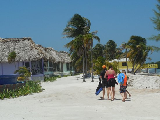 Blackbird Caye Resort : A group walking by Cabanas