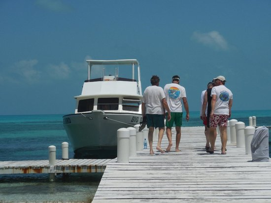Blackbird Caye Resort: Half Mon Caye dock