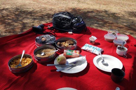 Tarangire Treetops: Picnic breakfast