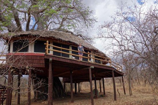 Tarangire Treetops: Tent