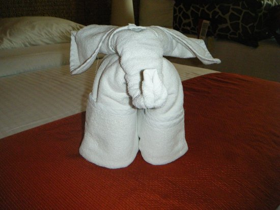Royal Decameron Complex: elephant