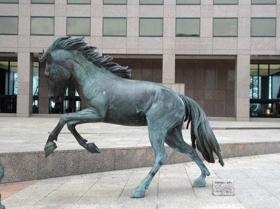 Mustangs of Las Colinas: Stallion