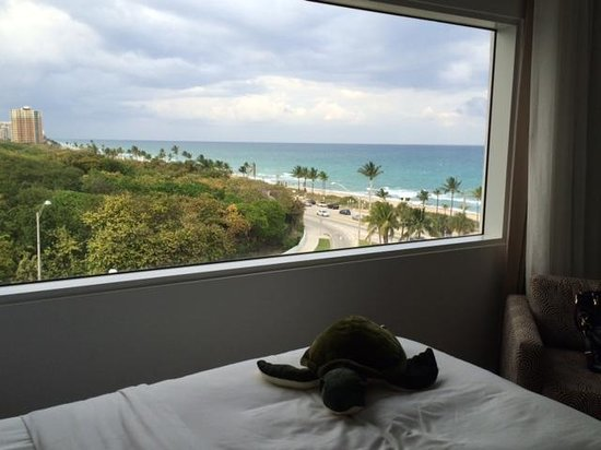Sonesta Fort Lauderdale Beach: The view from room 721!