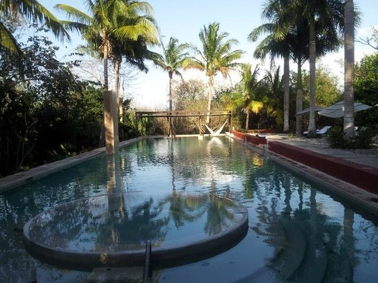 Hacienda San Jose, A Luxury Collection Hotel, San Jose : Swimming pool with hammocks