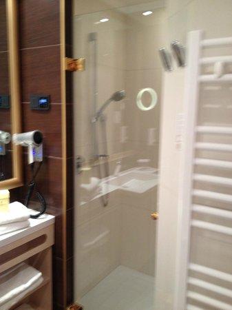 Hotel Schlosskrone : The shower
