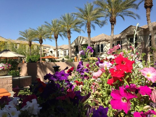 Gainey Suites Hotel : Courtyard palms