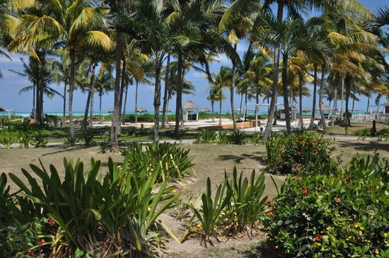 Sol Cayo Guillermo: The beach view