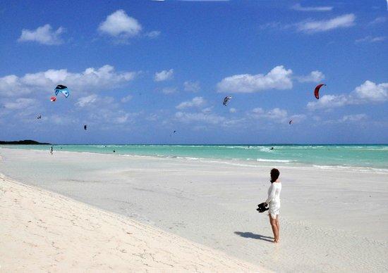 Sol Cayo Guillermo: The beach