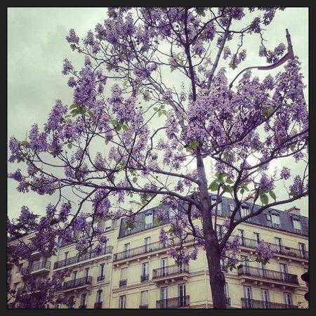 Ibis Paris Place D'italie 13ème : Alrededores