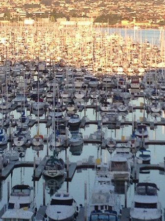 The Sheraton San Diego Hotel & Marina: Morning view from my room. Watching the sun light up the boats one by one.
