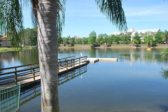 Liki Tiki Village: Lake/property