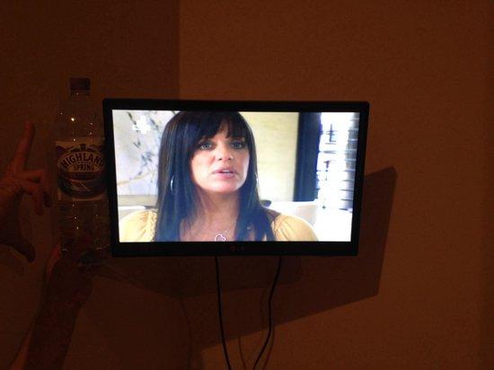 Regency Guest House: A TV for triple room, shorter than a bottle