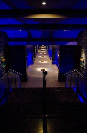 Shangri-La's Eros Hotel: Spa