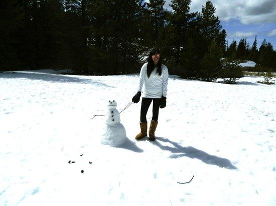 Wuksachi Lodge: snow play area