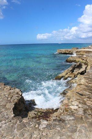 Viva Wyndham Dominicus Beach: gorgeous water