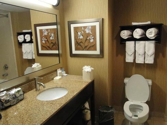 Hampton Inn Philadelphia Center City - Convention Center : Bathroom