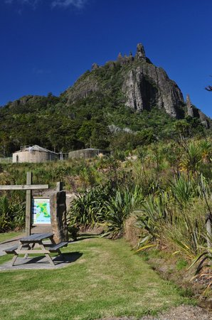 Mount Manaia Track: Start of track