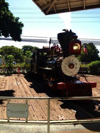 Sugar Cane Train : サトウキビ列車 機関車方向転換 切り替えポイント
