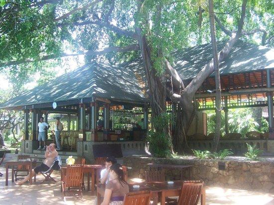 Cinnamon Grand Colombo: outside bar