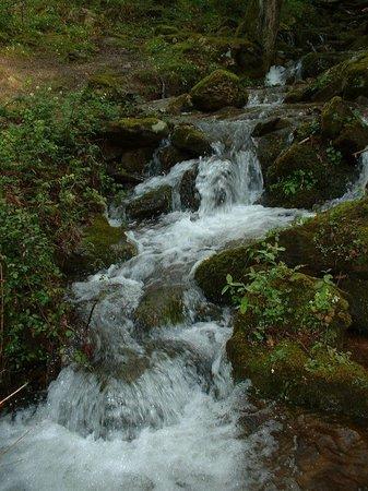 Casa Rural Haitzetxea: Nuestro río