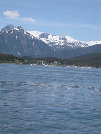 Adventure Bound Alaska Tracy Arm Glacier Cruise : High mountain