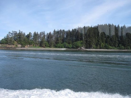 Adventure Bound Alaska Tracy Arm Glacier Cruise : Along the coast line