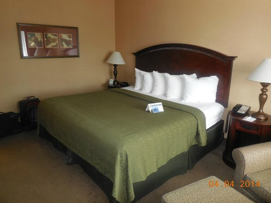Quality Inn & Suites Airport: King size bed