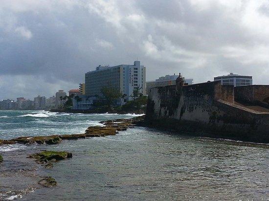 Caribe Hilton San Juan: View from garden